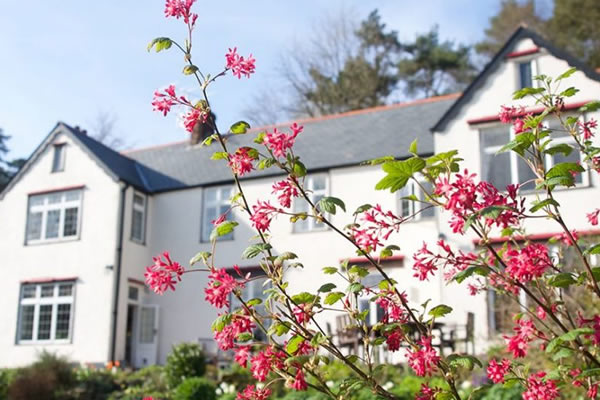 Bed and Breakfast on Exmoor National Park