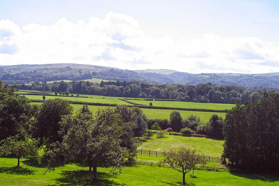 Bossington Hall Views